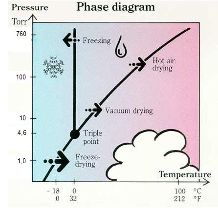 Freeze drying การทำแห้งแบบแช่เยือกแข็ง